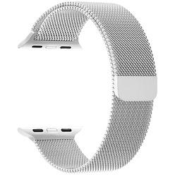 Ремешок для умных часов Lyambda Capella 38/40 мм, серебряный (DS-APM02-40-SL)