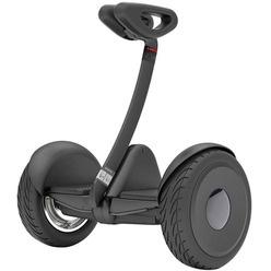 Segway Ninebot S черный