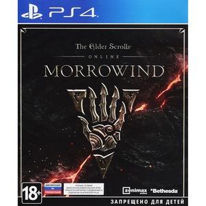 Elder Scrolls Online: Morrowind PS4, русская документация