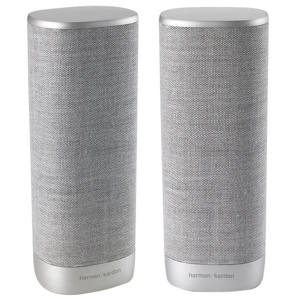 купить Акустическая система Harman/Kardon Citation Surround серый - цена, описание, отзывы - фото 1